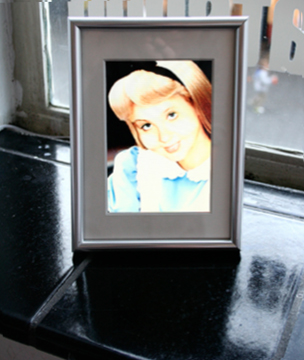 MySpace BFF - The Girl from Celebration / 2009 / digital photo frame / 14,8 x 21 cm