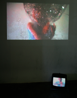 Disney Girl, video installation, 2009